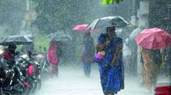 Odisha reports 77 deaths in cyclone Titli
