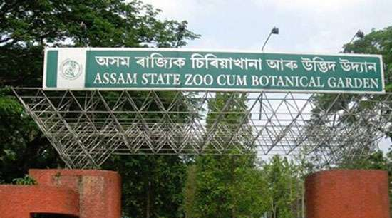 Foundation Stone Laid for Wildlife Conservation at Assam State Zoo ...