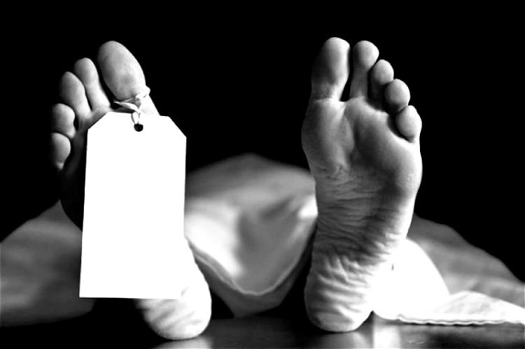 Farmer dies of Japanese Encephalitis in Sivasagar district, Assam