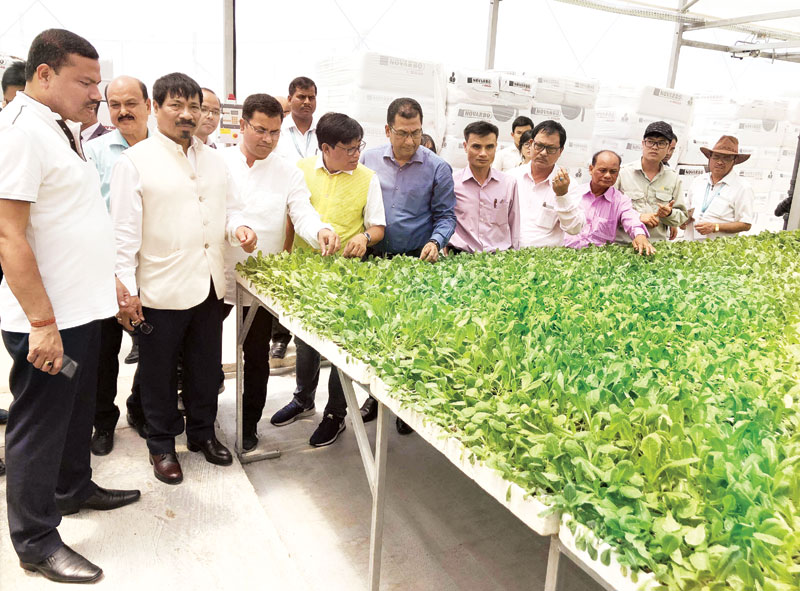 Vietnami province evinces interest in Assam agriculture sector