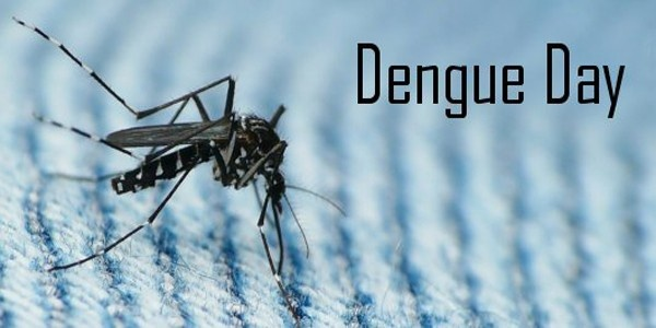 National Dengue Day observed