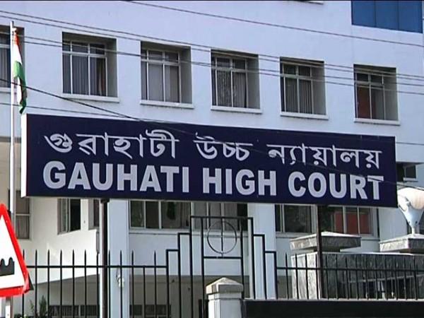 Prime accused granted bail
