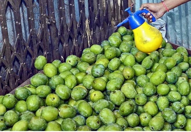 Concern over sale of artificially-ripened fruits