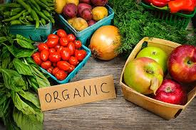 'Healthy Food' Triggers Organic Food Export