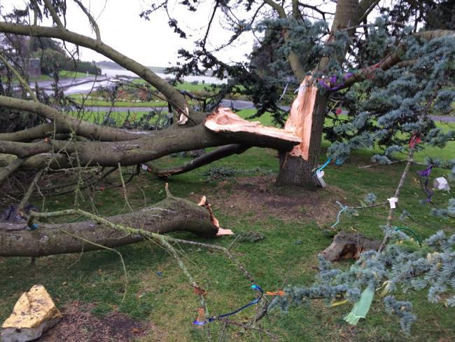 Devastating storm kills one