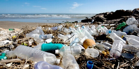 Why can't Action against CFCs be Replicated against Plastics?