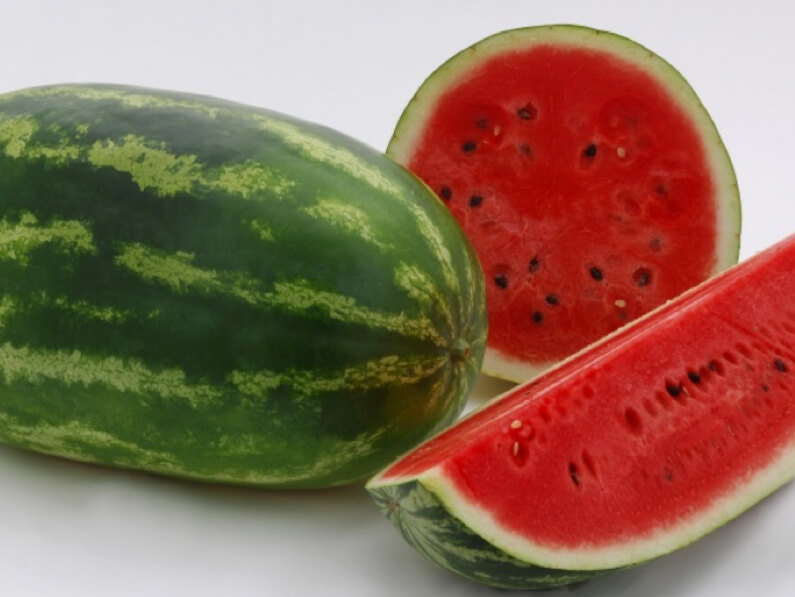 Hybrid variety of  watermelon thrive in Tezu