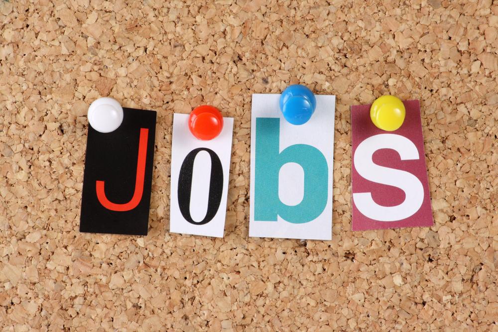 India needs payroll data system to map job creation: Assocham
