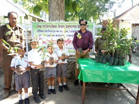 World Environment Day celebrated with gaiety across State