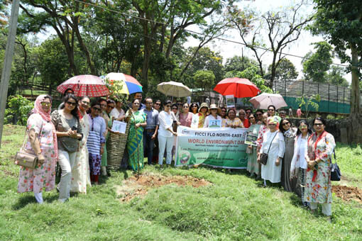 FICCI FLO NE distributes saplings