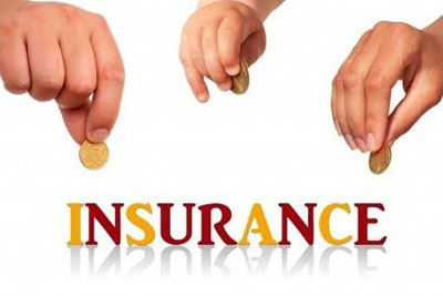 Options in the Insurance Industry
