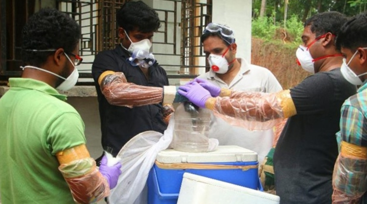 Central team to identify source of Nipah virus