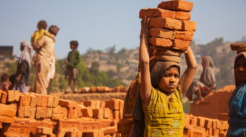 World Day against Child Labour observed