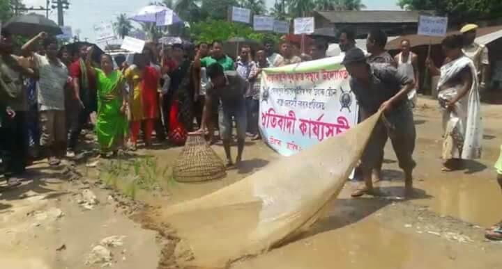 Locals transplant  paddy, fish on road