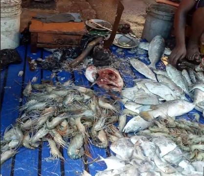 Guwahati Fish market continues to wear deserted look