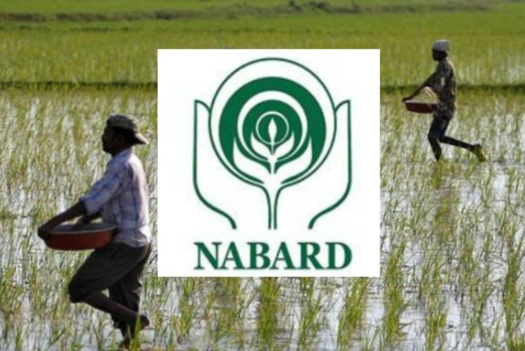 NABARD sanctions Rs 735 cr under RIDF Bengal - Sentinelassam