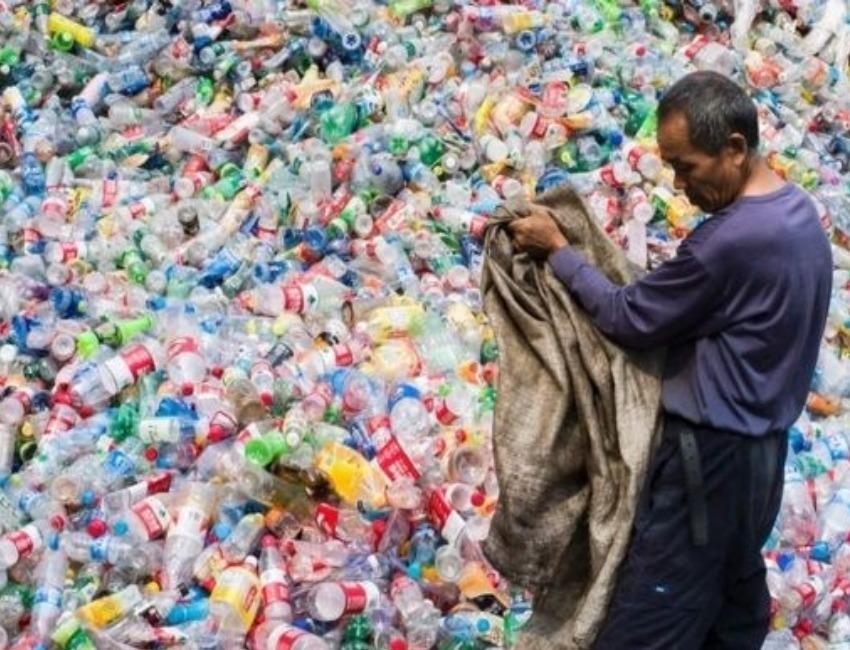 The future of plastic? Scientists explore bioplastics from sorghum