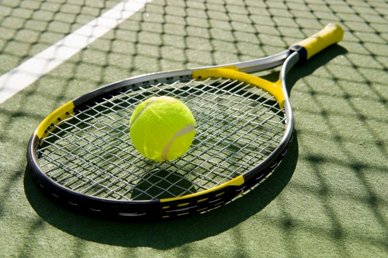 Junior India squad for Davis Cup,  Fed Cup med