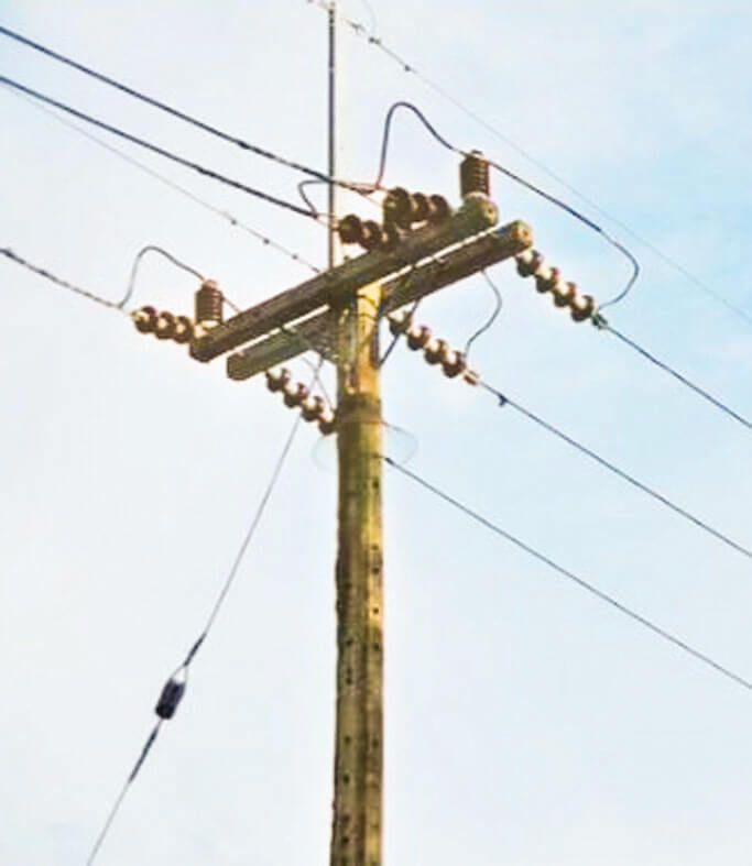 Assam Government to electrify all 64 lakh households by December 31