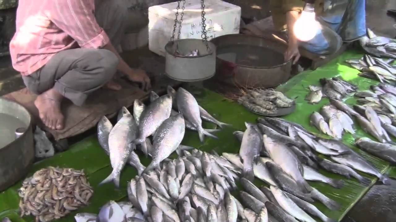 Ban on sale  of fresh fish products
