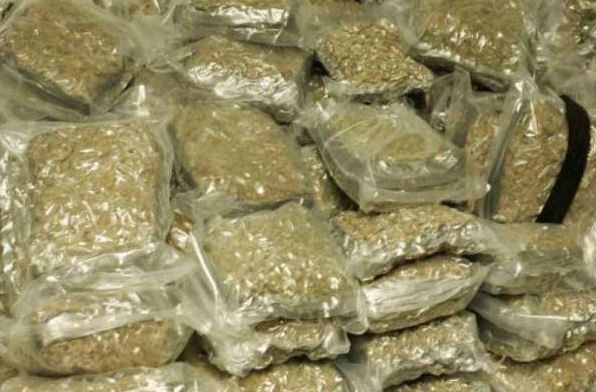 Ten kg ganja seized, 2 youths hailing from Bihar held