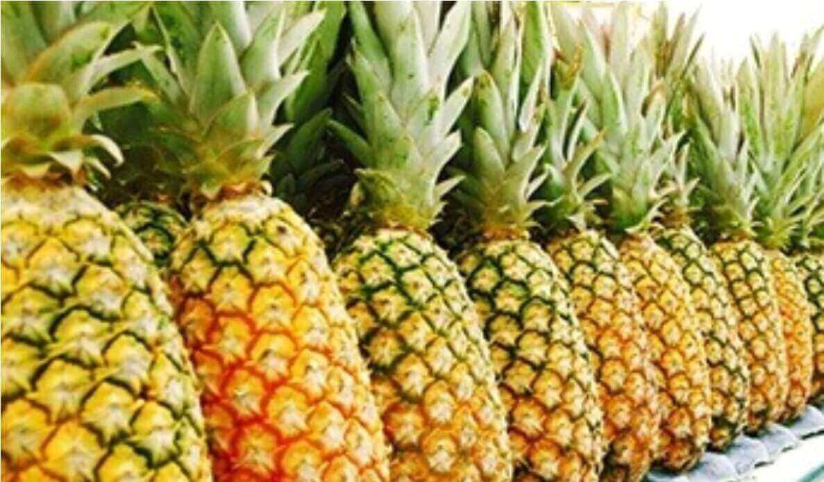 Pineapple festival comes to close