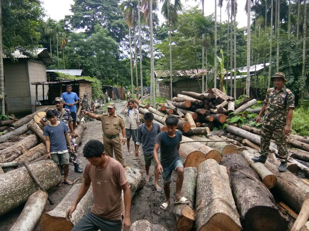 Illegal timber mill seized at Tamulpur