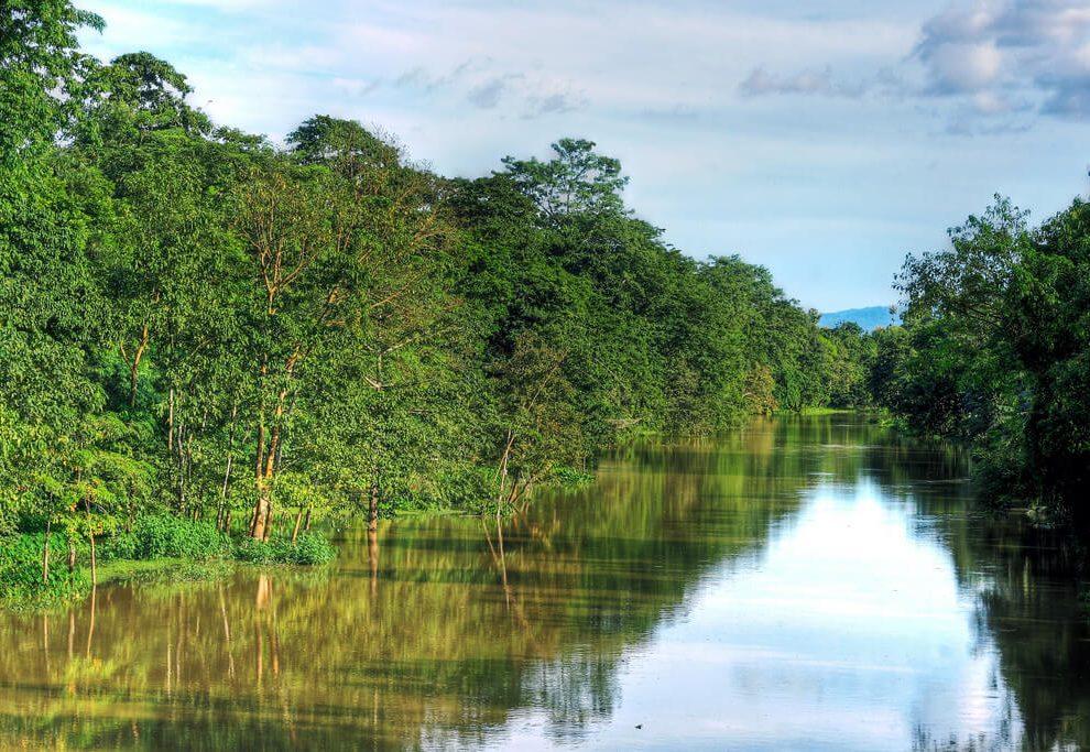 Kolong river