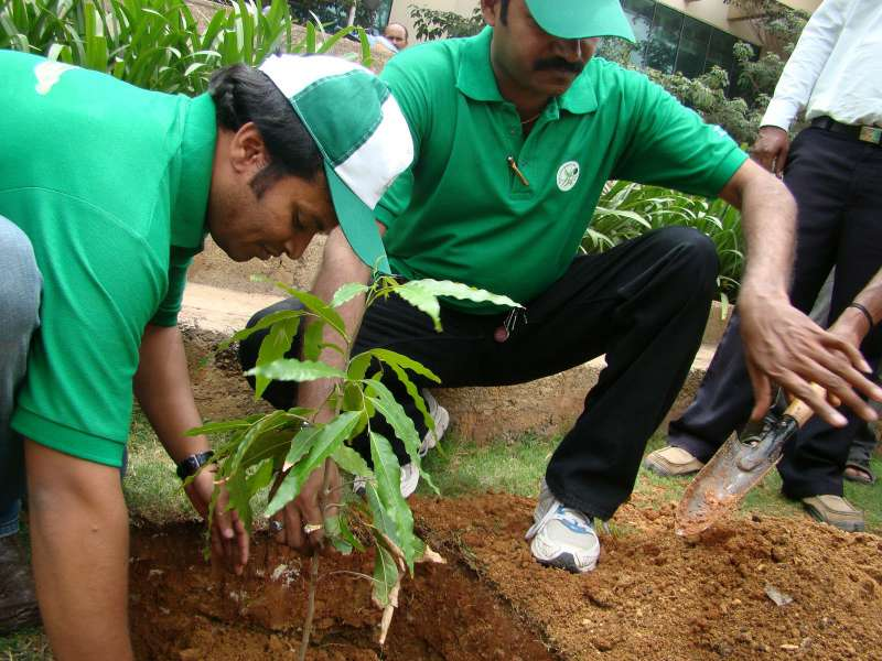 Large-scale plantation drive, 12 lakh saplings to be planted in Goalpara