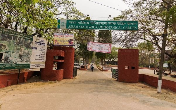 Inquiries on to Unearth Anomalies at the Assam State Zoo cum Botanical Garden