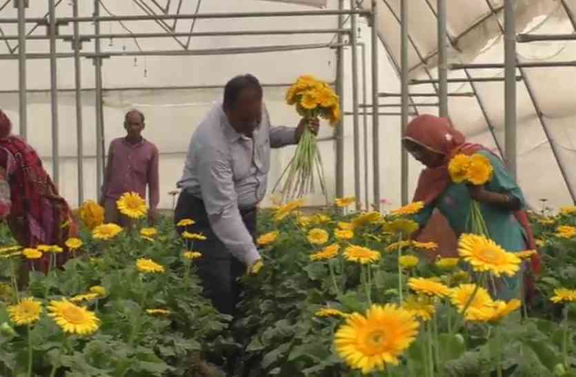 Unconventional Farming Can Help Farmers Double Their Income