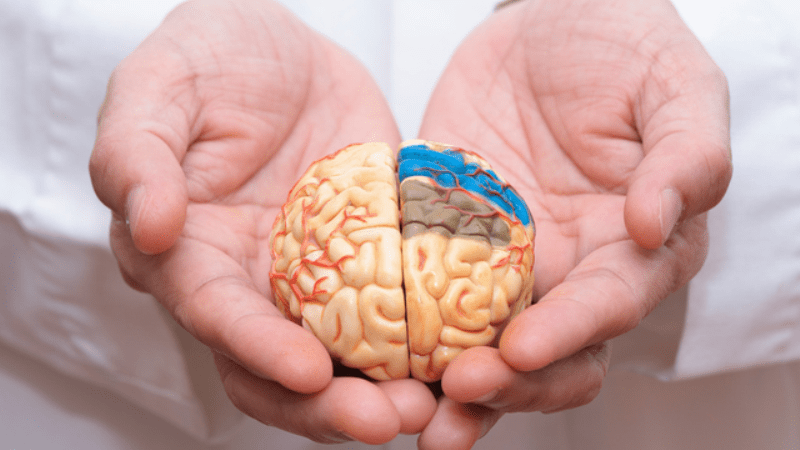 Non Inherited DNA and Dementia: Things to Know