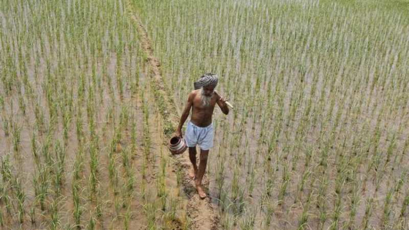 Punjab to Give Unique Number to Plots of Land to Prevent Frauds