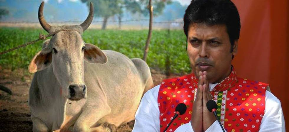 Biplab Deb to keep Cows at Home and Motivate People for the Same