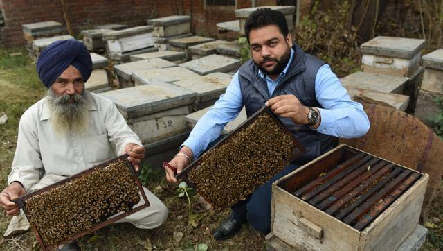 Himachal Pradesh Promotes Bee Keeping