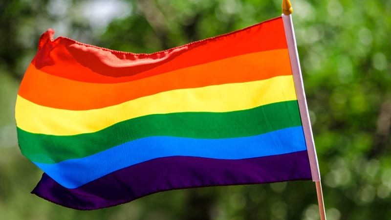 Bengal Shocker: Owner Allegedly Beats up Same-Sex Couple Living Together
