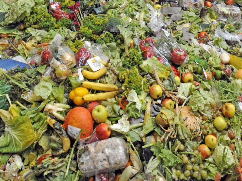 Reduce Food Waste, Save The Environment: Here Are 5 Tips