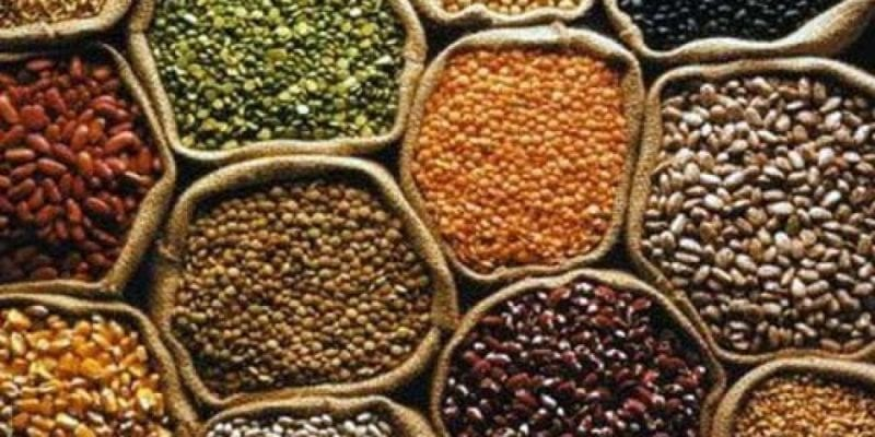 Tripura : Scientist Discovered Three New Varieties of Pulses