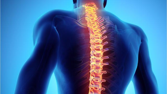 New hope for spinal-cord injury patients
