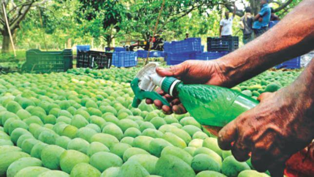 Maharashtra Government orders Life-term Punishment for Food Adulteration