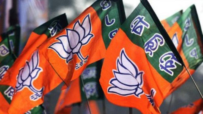 Voters Have Rejected  Strange Bedfellows: BJP