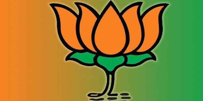 High-level committee higher in Status than sub-committee: BJP