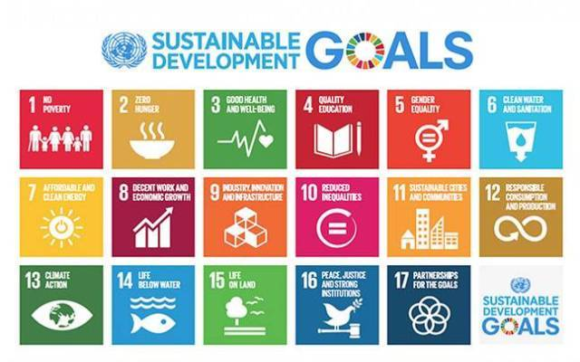 Nagaland Tagged Under PerformerCategory in SDG Index Baseline Report 2018