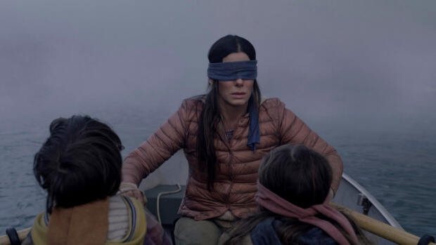 Netflix Urges People To Stop Taking #BirdboxChallenge