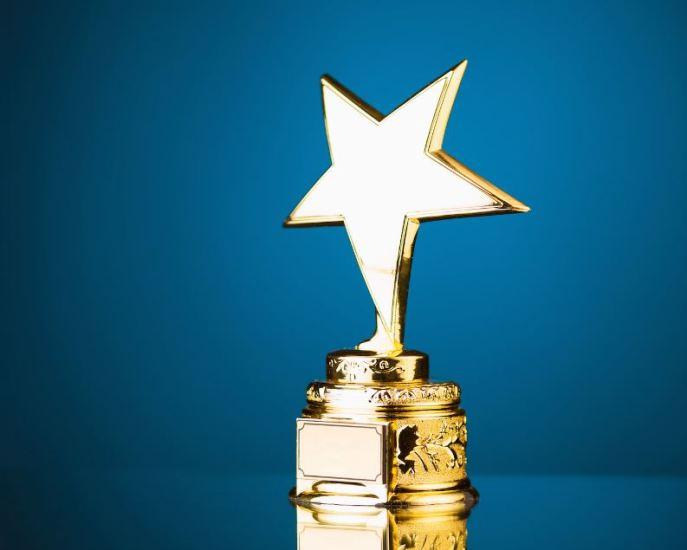 Arunachalee sculptor bags Pranab Barua Art Award