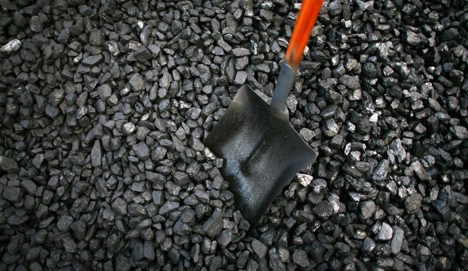 Coal Mining Took Place During NGT-Ban Phase: Comptroller and Auditor General (CAG)