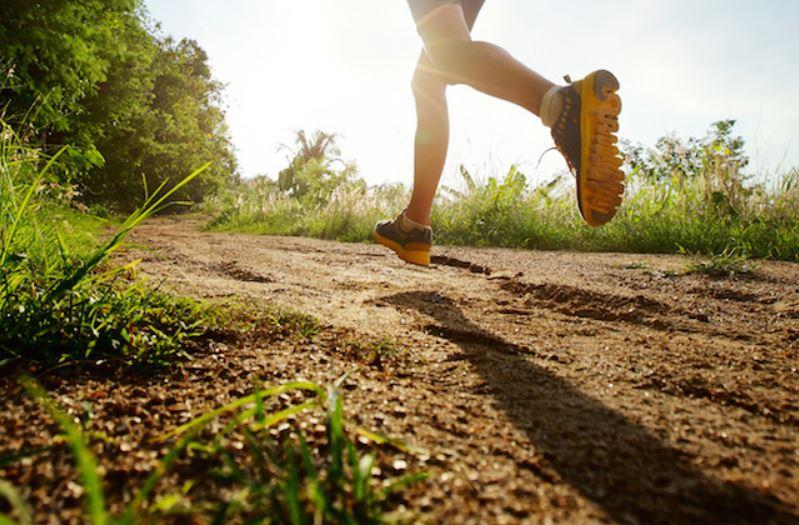Make a Room for Holistic Wellness