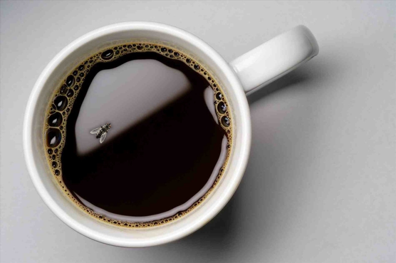 Bug In Coffee At Renowned Fast-Food Franchise At Bhangagarh