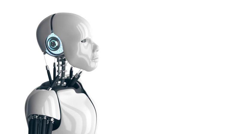 Study Says Robots Can Mimick Nature To Build Future Cities