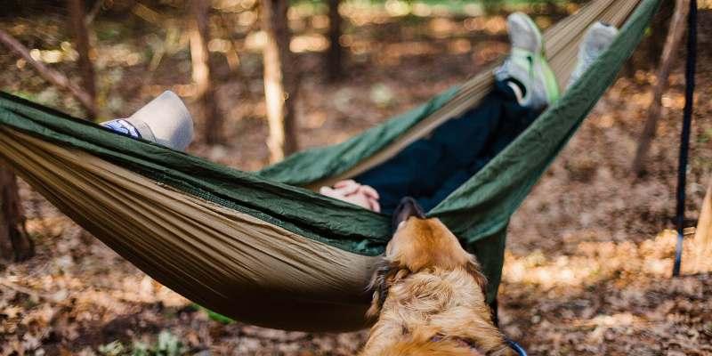 Study Says Sleeping In On Weekend Wont Repay Your Weeks Sleep Debt